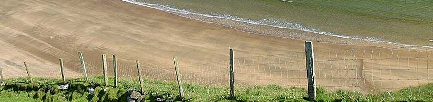 Picture of a fence near the sea and showing erosion